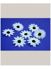 fleursx24/d5cm blanche