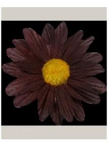 fleursx24/d5cm chocolat