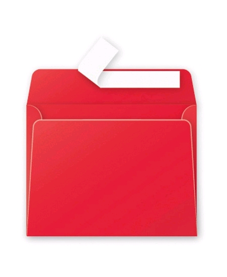 enveloppex20/9x14cm rouge groseille 120grs pollen
