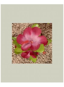 hibiscus fuchsia/rose pince cheveux
