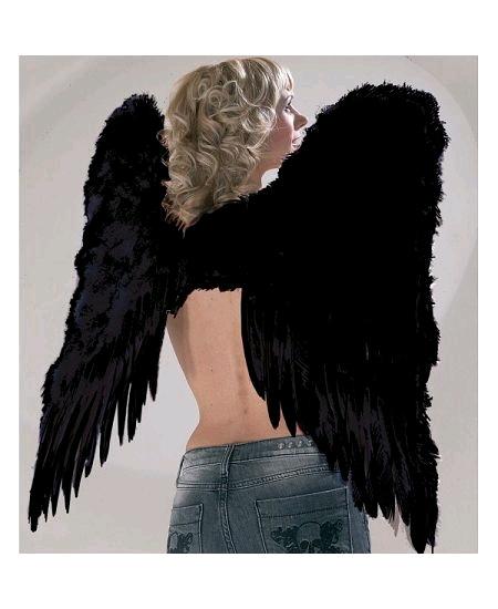 aile d`ange plume noire H70cm