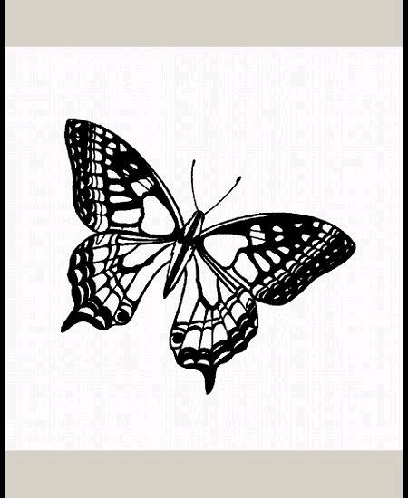 tampon papillon (B)