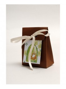 pochonsx5 communion chocolat/vert