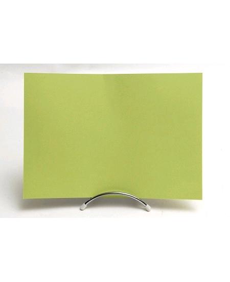 feuille vert bourgeonx50/160grs 210x297m