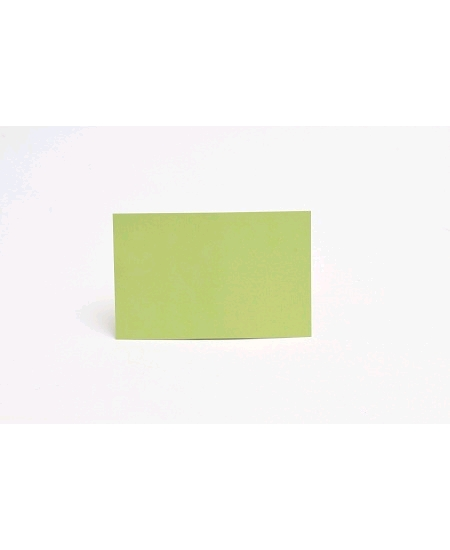 carte simplex25 vert bourgeon 82x128cm