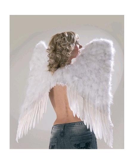 aile d`ange plume blanche H70cm