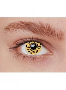 paire de lentilles léopard