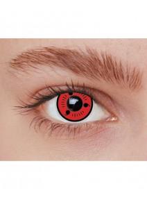 lentilles shariga (rouge) 1AN