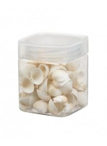 coquillages 110grs