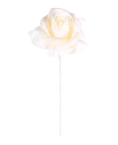 rosesx6 ivoire sur tige D5cm