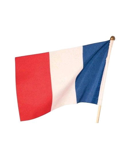 drapeau 22cmx15cm