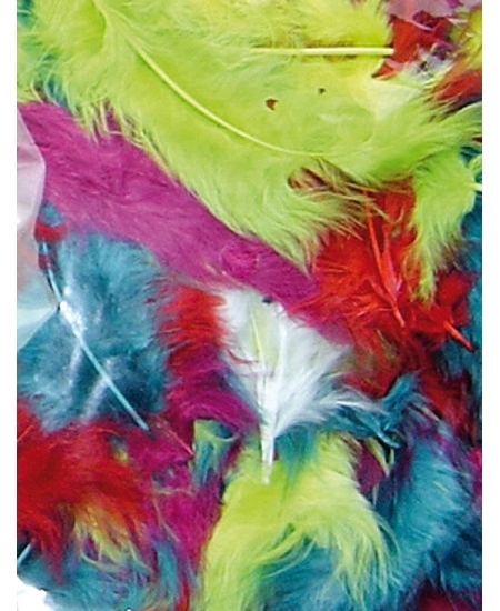 plumes multicolore 5-10cm/10grs
