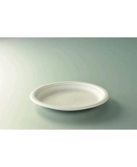 assiettesx50/D23cm canne à sucre