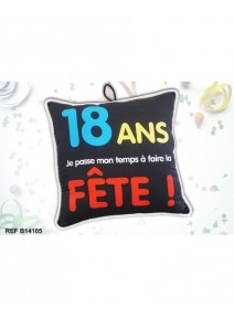 coussin 18ANS