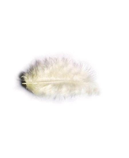 plumes ivoire 5-10cm/10grs