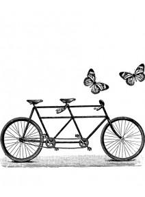 tampon tandem et papillons (G)