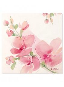 serviettesx20/33x33cm orchidées