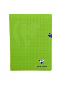 cahier 96pages/24x32cm vert pomme