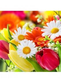 serviettesx4/3 plis fleurs diverses