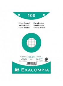 fiches bristolx100/12.5cm x20cm