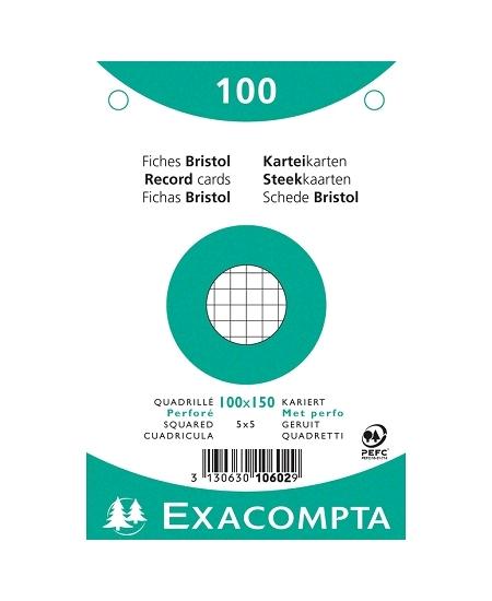 fiches bristolx100/10cmx15cm