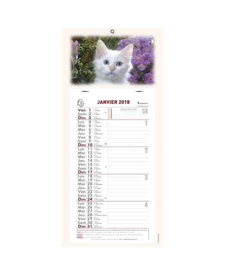 calendrier mensuel 2018 GM chat