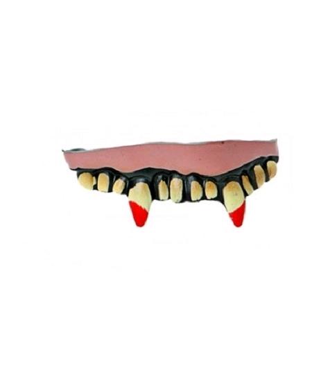 dentier 8 dents vampire