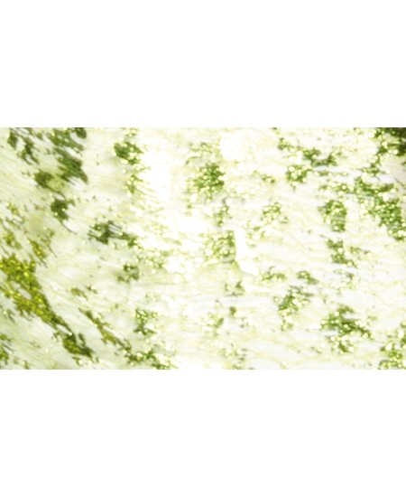 chemin de table 5Mx29cm vert éclats